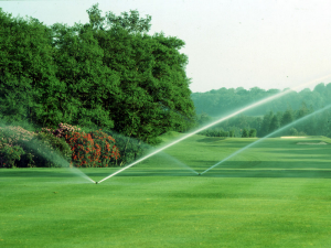 irrigation6-lg