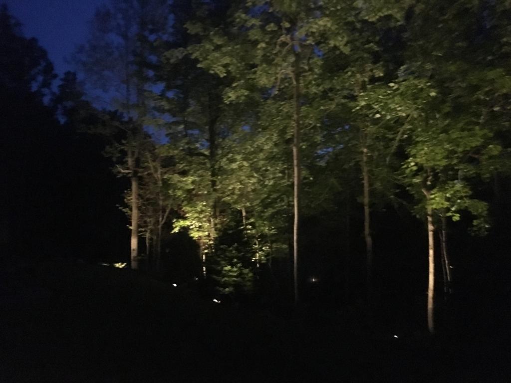 lighting16-lg